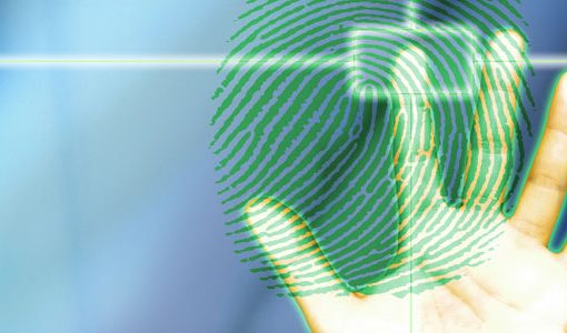 Your Basic Guide to Using Online Identification Tools